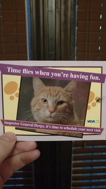 Every year we look forward to receiving our yearly check up reminder card from the vet