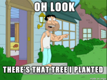 Everyone after PornHubs arbor day promotion