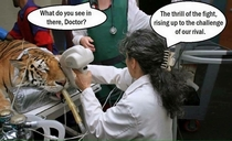 Funny Gynecologist Meme : I painted this for my gynecologist meme guy