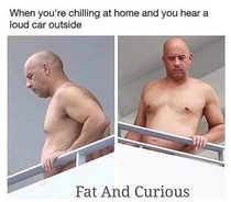 Fat and Curious coming soon to theatres everywhere