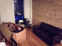 Finally got a couch for the new apartment my friends were pretty excited