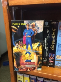 FLESH Gordon donated to the Christian thrift store