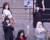 Football soccer club FC Seoul accidentally used sx dolls as makeshift fans instead of mannequinsThe club has apologised