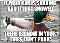 For all the drivers out there new to snowstorms - your car is probably okay a quick check can save you time and money from unscrupulous mechanics