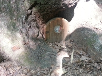 Found someones home while playing Frisbee golf in North Carolina