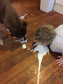 Found  yr old cleaning up the milk he spiltwith the dog