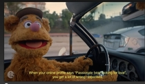 Fozzie Bear has it tough