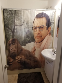 Friend bought me a new shower curtain I did not know i needed this untill i recieved it
