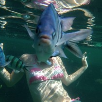 Friend tried to take an underwater photo of his wife during their honeymoon