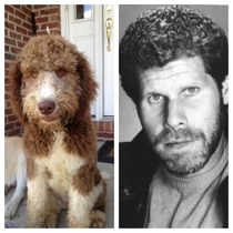 Friends dog looked a little familiar Ron Perlman