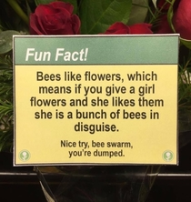 Fun facts at the flower shop