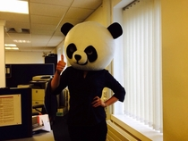 GF sent me this Shes the new Sexual Harassment Panda for her company