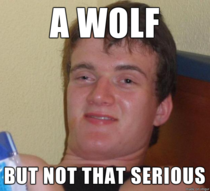 GF trying to say coyote