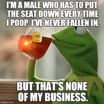 Girls complain about falling in the toilet all the time