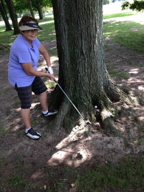 Golfing with grandma when she yells out how the fuck am I supposed to hit this
