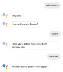 Google Assistant apparently doesnt like being called other AIs names