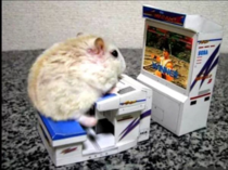 Googled best gaming mouse was not disappointed