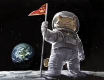 Googled cat astronaut Was not dissapointed