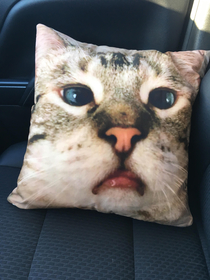 Got our cat printed on a pillow