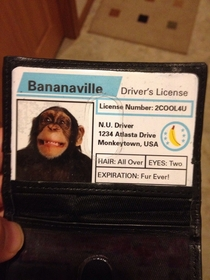 Got pulled over today Forgot I had this in my wallet covering my real license Mr Policeman was not amused