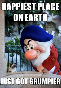 Grumpy Cat goes to Disneyland