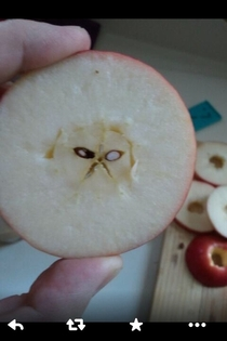 Grumpy catin my apple