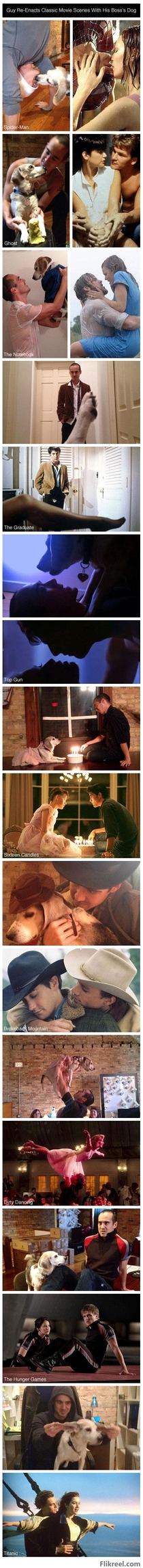 Guy re-enacts classic movies scenes with his Bosss dog