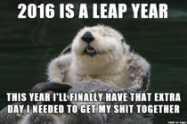 Happy New Year from Optimistic Otter