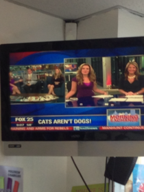 Hard hitting reporting from Fox this morning