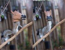Has science gone too far Horse head squirrel feeder
