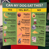 Helpful food chart for dogs