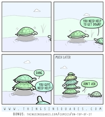 helpful turtles