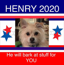 Henry approves this message