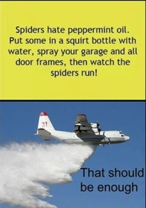 Here is a tip to rid yourself of spiders