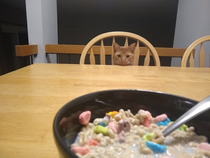 Hes always after me lucky charms