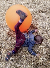 His first trip to the pumpkin patch went smoothly