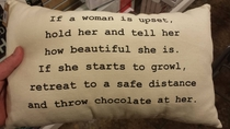 Homegoods pillow on comforting women