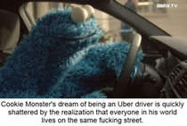 How did Cookie Monster not realize this earlier