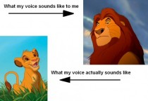 How I think my voice sounds