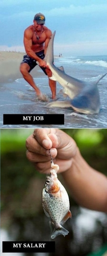 How my salary works