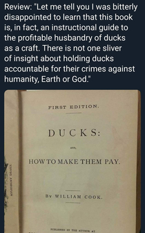 How to make ducks pay