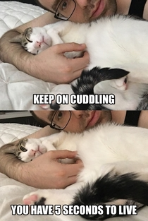 How to tell if it Is it safe for the cuddles