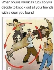 How to use a deer