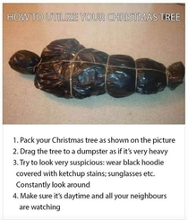How to utilize your old Christmas tree