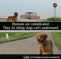 humans can be tricky