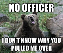 I always wanted to say this when I got pulled over