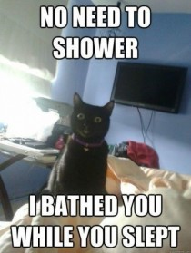 I bathed u while u slept