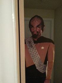 I bought a  ft Worf for the sole purpose of moving him around to scare my wife once a week