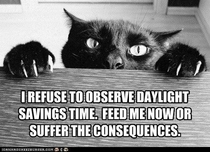 I can has Daylight Time back