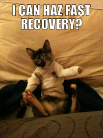 I can has fast recovery